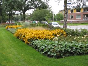 Brakkenstein Nijmegen